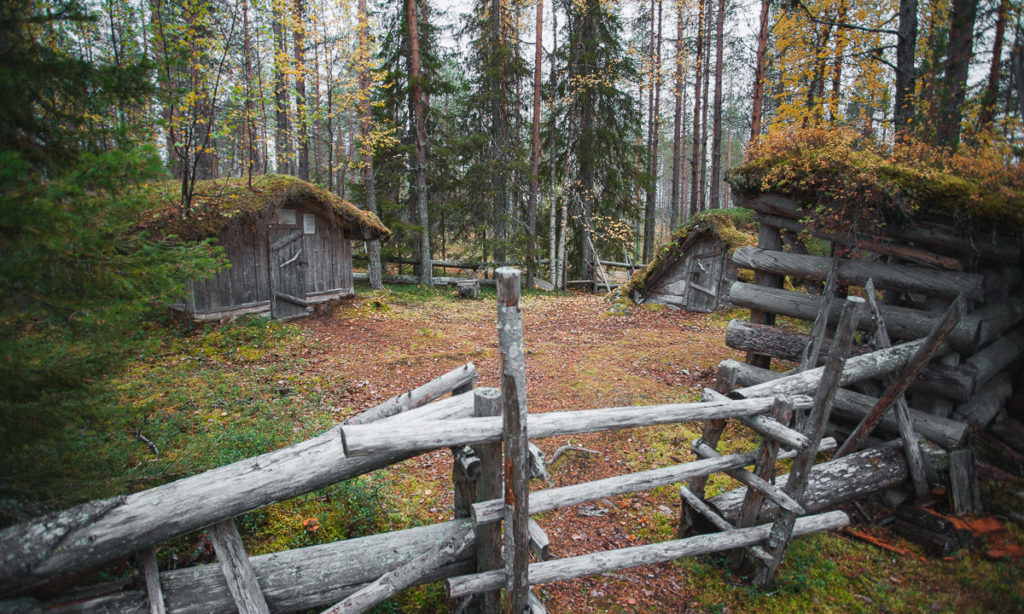 Erakko Heikkisen kämpän pihapiiri