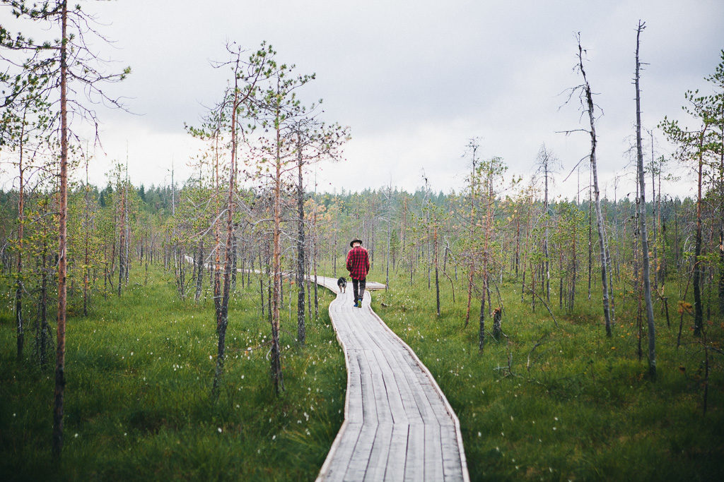 Reitti Tirroniemeen kulkee upean suon yli ja siinä hyvät pitkospuut